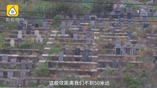 武汉一坟景房交房:窗外是墓地,主卧能看到碑文
