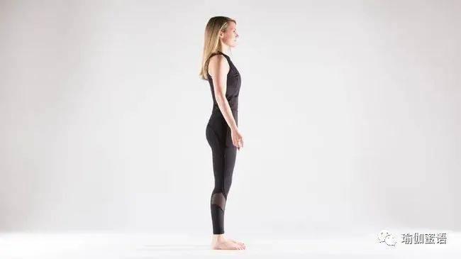 养护脾胃,过年必学——促消化的阴瑜伽序列体式!