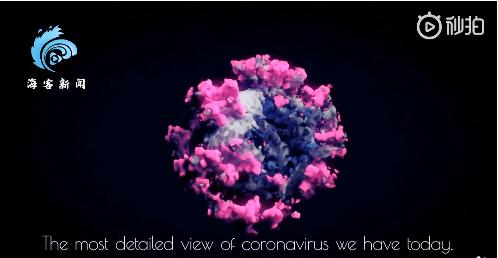 新冠病毒首个3D图像曝光!网友:终于看清你了…
