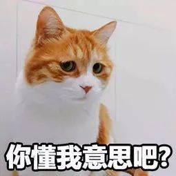 紧急!广东一老人不慎坠入3米高电梯井,周围一片漆黑!
