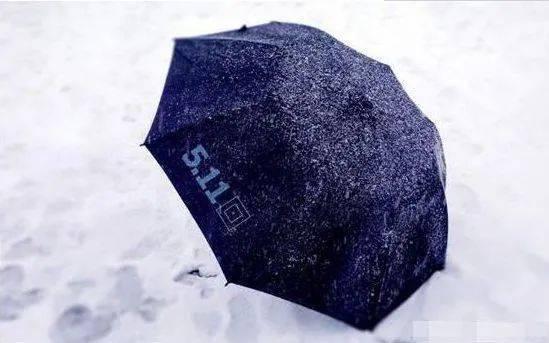 情感测试:假如下雨,你会打哪把伞?测谁会一直为你遮风挡雨!
