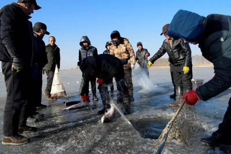 """新春走基层丨浑源农民变渔民,破冰打捞""""致富鱼""""  第1张"""