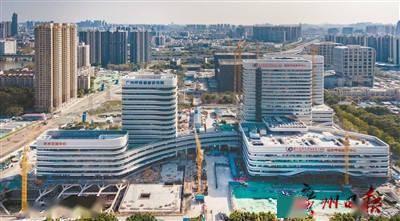 首个工作日,广州犇起来
