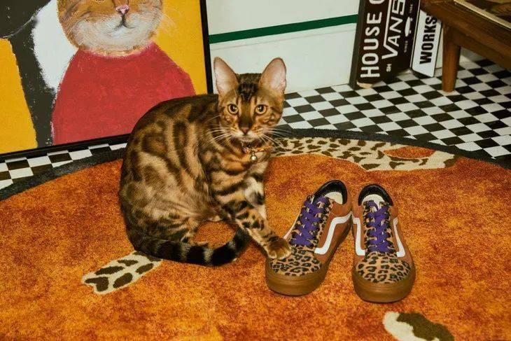Jennie的40w美金定制床垫买不起,三位数的定制球鞋我看行