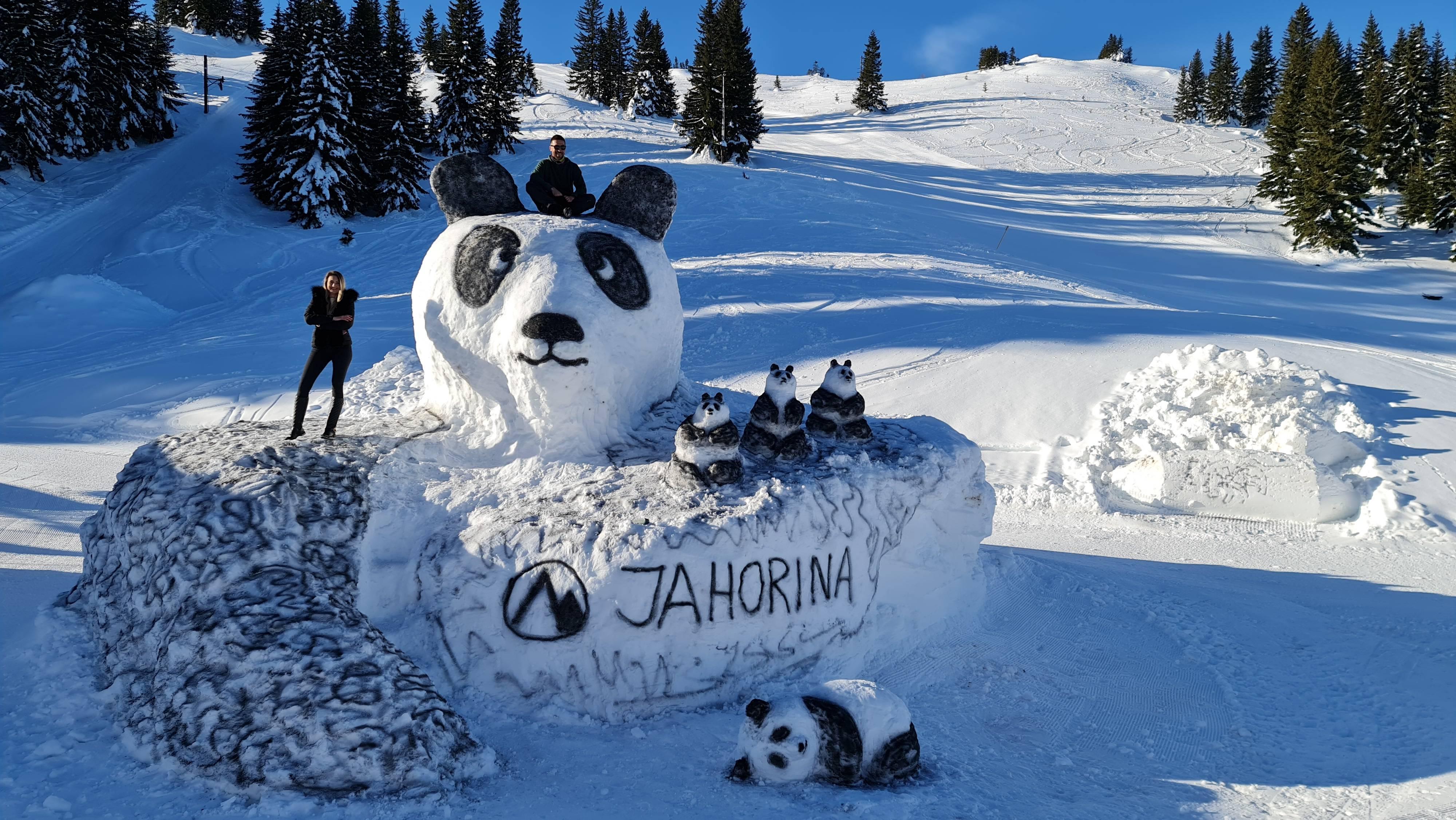 """通讯:疫情中,""""大熊猫家族""""到波黑"""