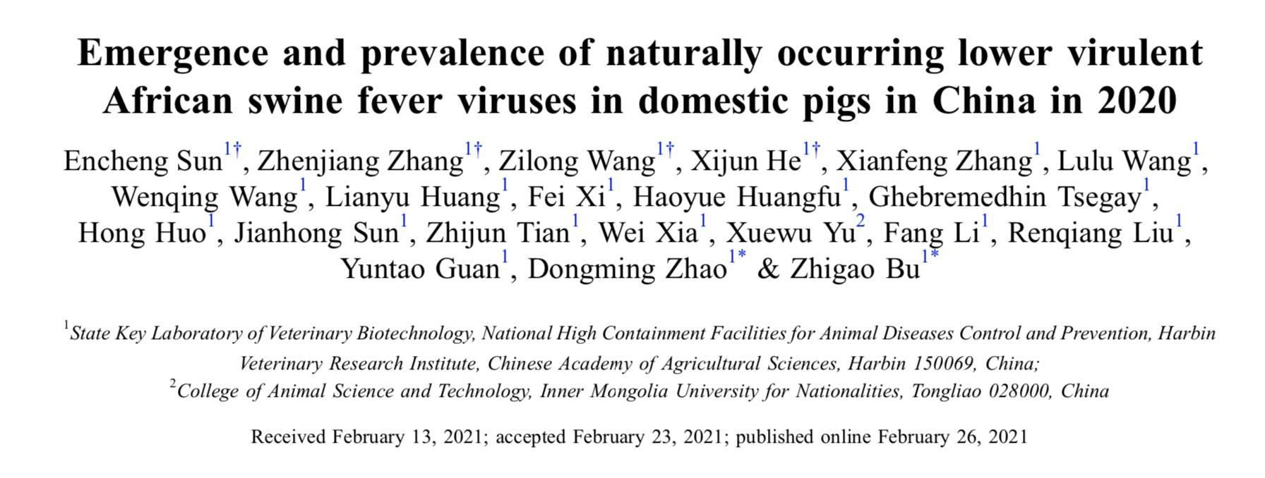 非洲猪瘟防控新挑战:中国部分省区发现低致死率自然变异株