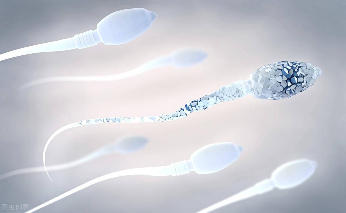 精子畸形率高就一定会生出畸形孩子吗?没有必然关联,要正确认识精子畸形率