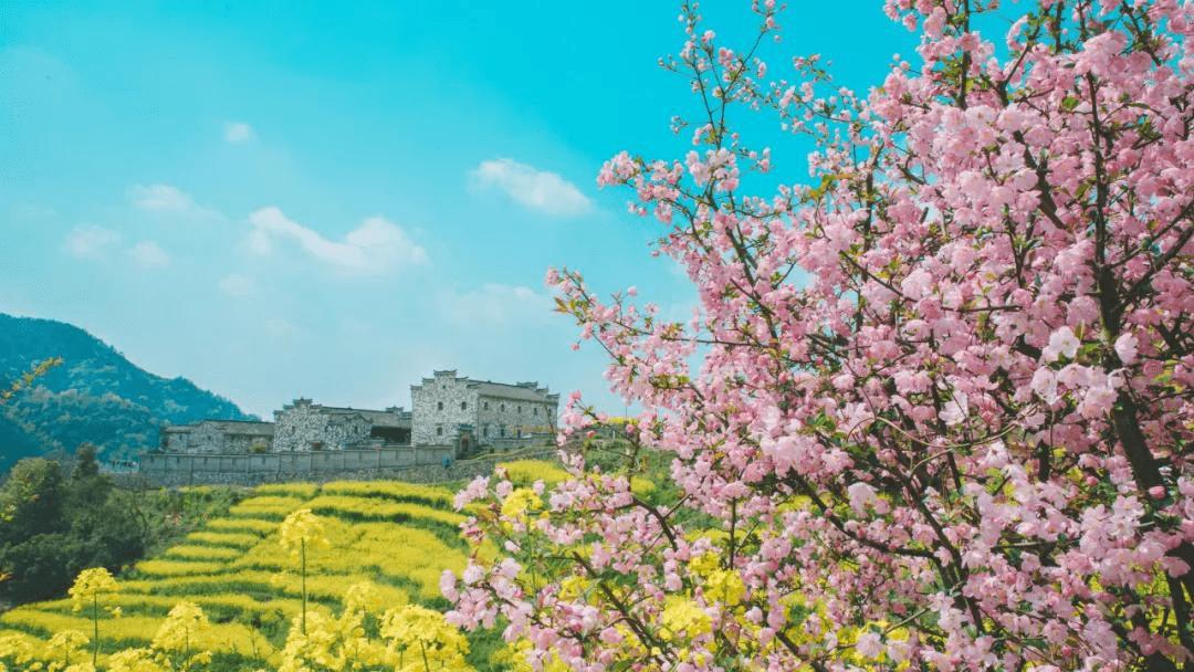 3月最值得去的绝美旅行地,是时候安排一下自己的旅行清单啦