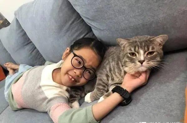 孩子一边吸猫一边写功课,网友:实验证明吸喵有助提升学习能力!