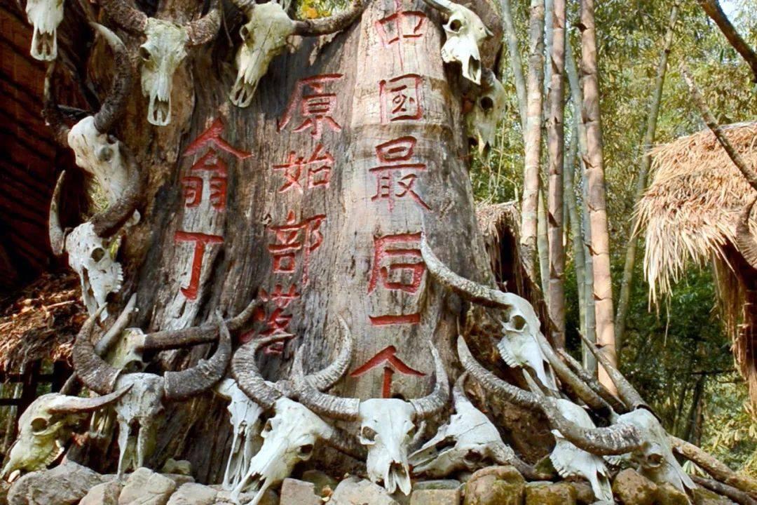 中国 未烧毁的翁丁永远变成了一幅画:中国最后一批原始人的影像
