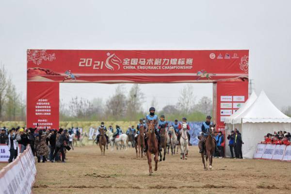 2021全国马术耐力锦标赛在砀山开赛