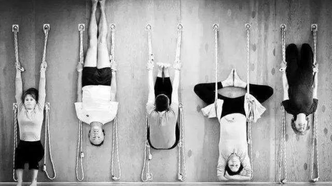"""墙绳瑜伽下半场之""""倒立后弯秘技"""",走向离开墙绳更完善的我_扬格"""