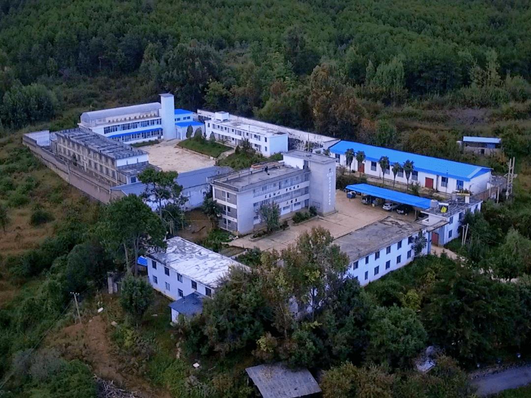打造中国最美百草园——云南白药集团丽江太安基地见闻