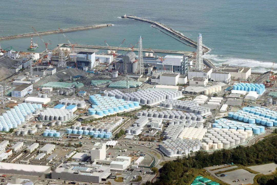 還能放心吃海鮮嗎? 日本要將核廢水排向大海,可能影響每個人_菅義偉