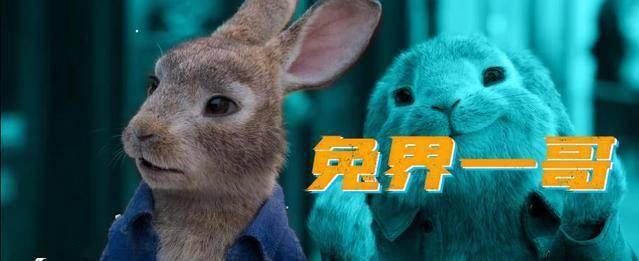 """踏上城市的冒险之旅 「比得兔2:逃跑计划」""""萌兔天团""""角色预告PV公布"""