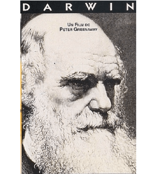 达尔文进化论的关键一步,为什么是在一艘船上完成的?