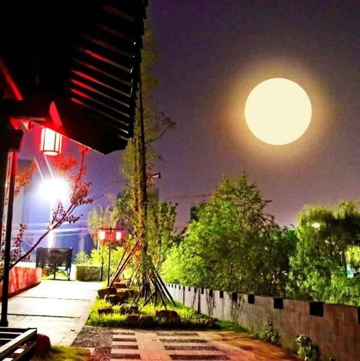 美醉了,泗县中秋节月夜!