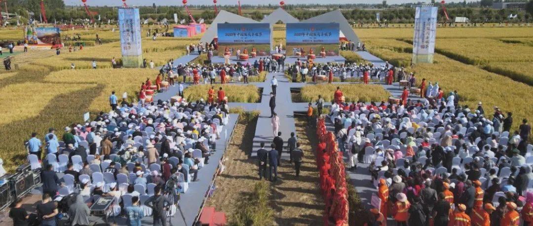 """丰收节里""""晒丰收""""!宁夏""""2021年中国农民丰收节""""在贺兰县稻渔空间开幕"""