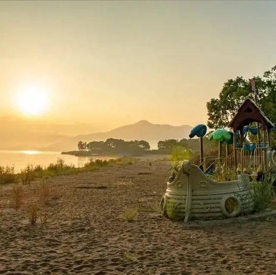 痛惜!宁波曾经收费的阳光沙滩,如今已是杂草丛生。怎么会这样